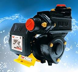 Ujala Big flow -I (1HP) Online | Buy 1Hp Ujala Big Flow-I in India - Pumpkart.com