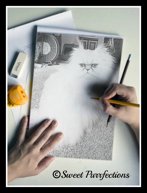 Caturday Art - Brulee