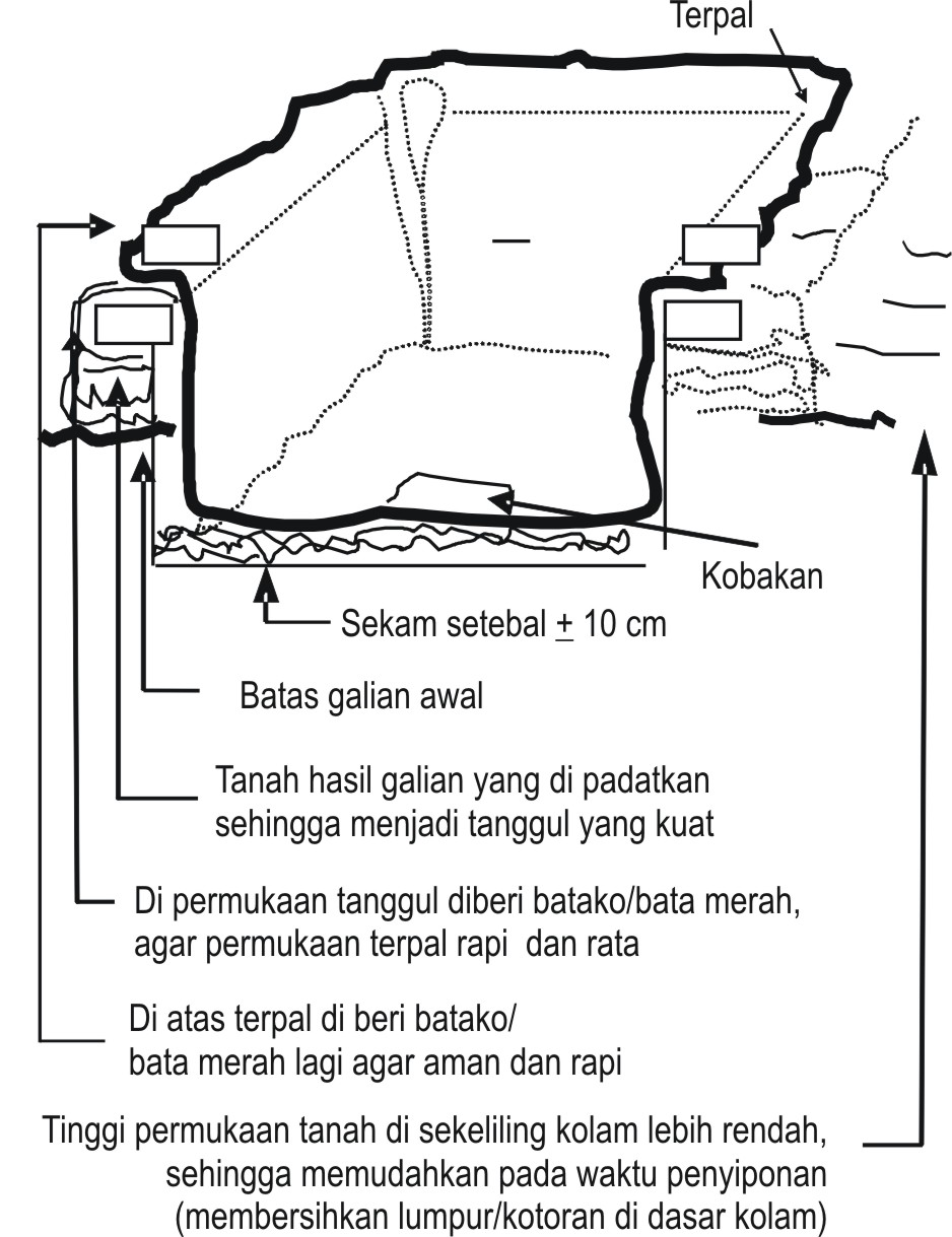 Langkah-langkah pembuatan kolam terpal adalah