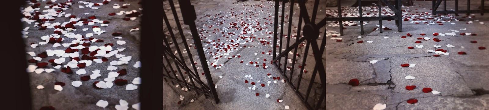 Sypanie płatków róż na weselu