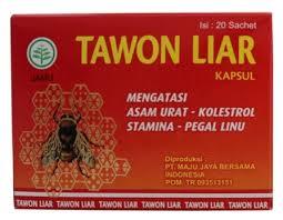 obat kapsul tawon liar asli jual herbal murah grosir agen obat herbal murah asli alami