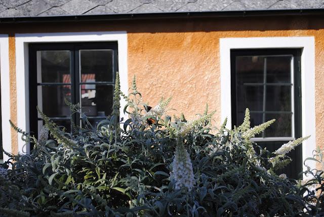 My Aunt's Swedish Cottage, Simisrahamn Sweden