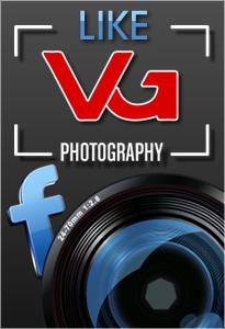 LIKE - Vali Greceanu Photography