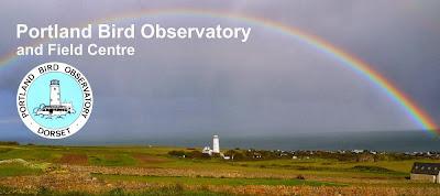 Portland Bird Observatory and Field Centre