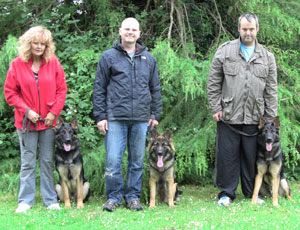 Three walkers with their dogs