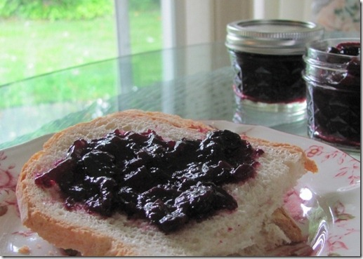 Blueberry Jam Without Pectin, Without Sugar