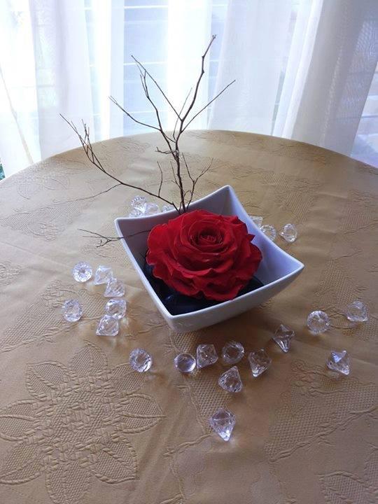 Rosas Rojas Naturales Preservadas ¡Duran 4 Años! Santa Ana, El Salvador