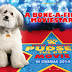 """Pudsey: The Movie"" First Trailer"