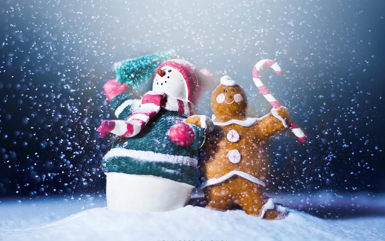 http://2.bp.blogspot.com/-kM3763I3SpQ/UIag0ikDFRI/AAAAAAAAHho/w_8RfpfrSRo/s1600/wallpaper-met-een-sneeuwpop-in-de-sneeuw.jpg