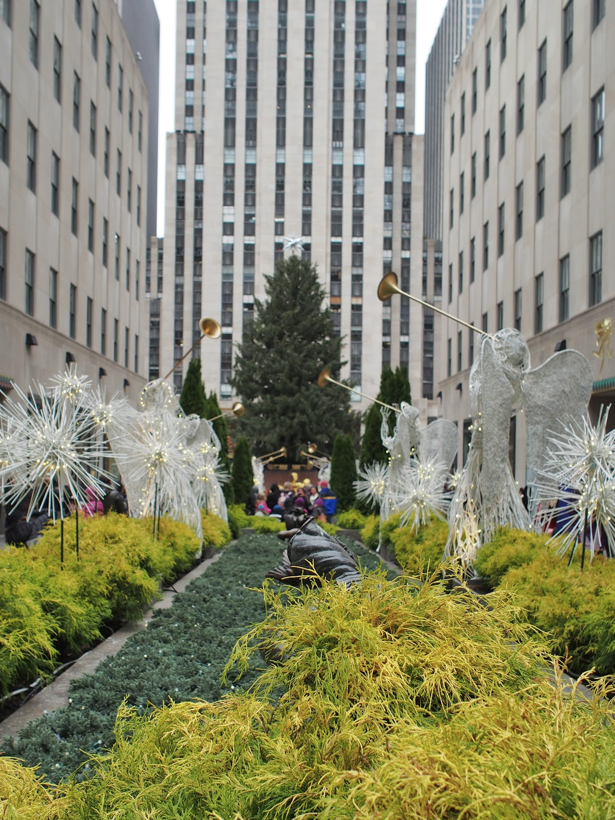 The 2014 #RockCenter Tree #the2014rockcentertree #holidays #holidaysinNYC #rockefellercenter #NYC ©2014 Nancy Lundebjerg