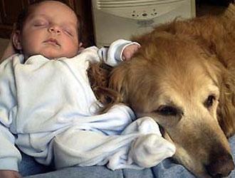 """ATLANTIDE RITROVATA: Pediatra: cani e gatti in casa fanno da """"scudo"""" ai bambini contro le allergie"""