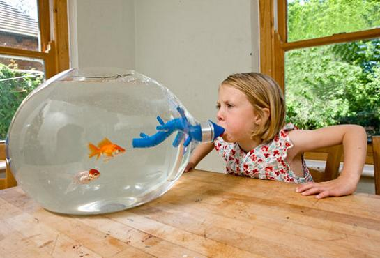15 Creative Fish Bowls And Cool Aquarium Designs Part 2