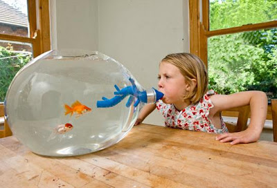 Creative Fish Bowls and Cool Aquarium Designs (15) 12