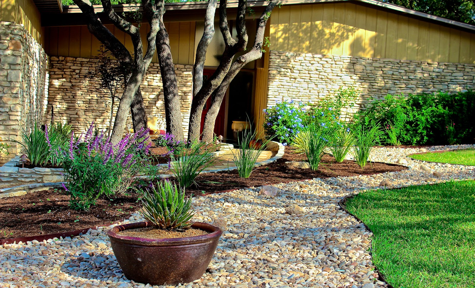 Sharing Nature's Garden: Reducing your lawn with beautiful ...
