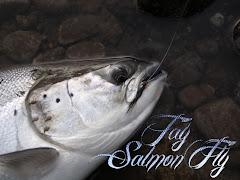 Tay Salmon Fly Website