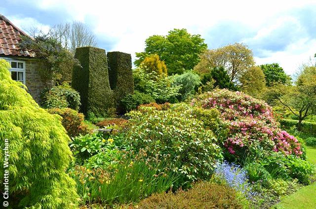 The Galloping Gardener Best Of British Cottage Gardens Stonehouse Nursery 1819209b