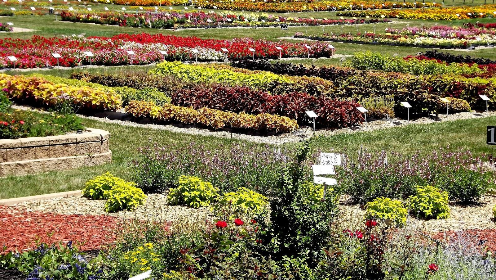 flower garden tour in southern michigan