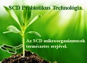 Mikroorganizmusokkal az egészségünkért, és a környezetünkért!