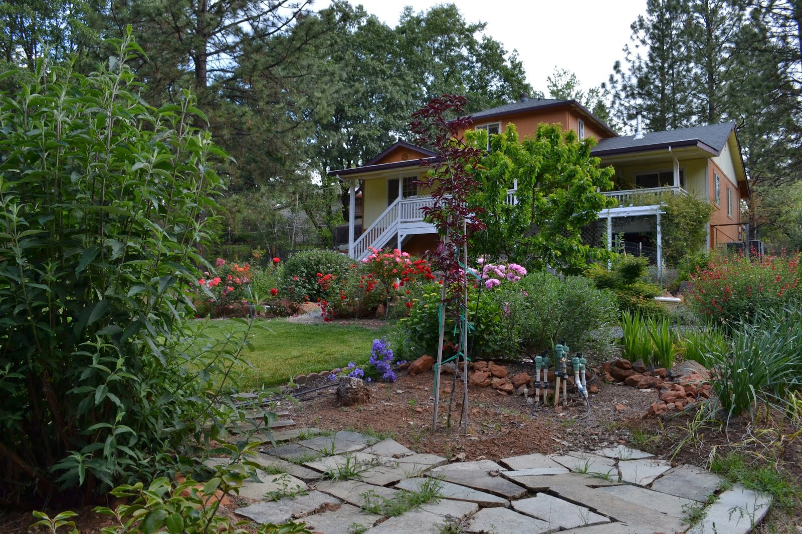 ALTA SIERRA HOME FOR SALE - GARDENER'S DREAM - SOLD