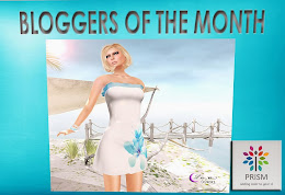 PRISM Blogger of the month May 2013