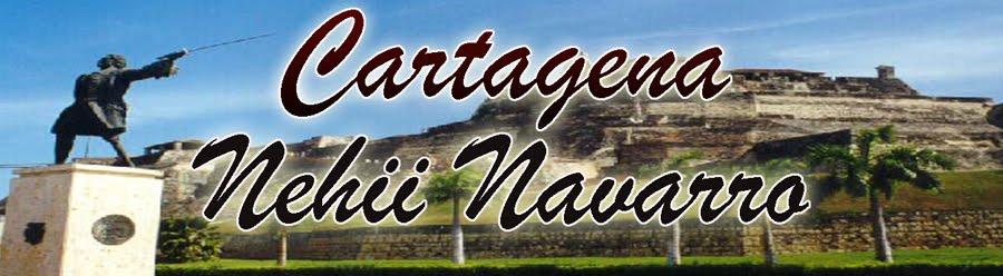 Nehii Navaarro