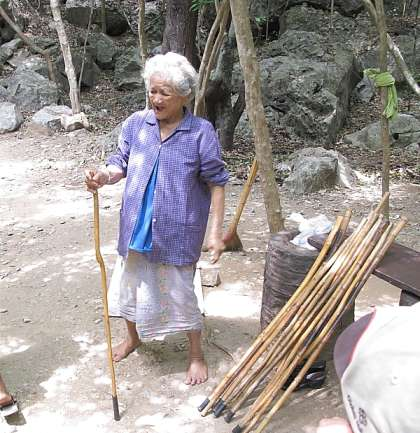 old lady with walking sticks for hire
