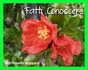 9 ° edizione di Fatti Conoscere. Scade il 05/10/2013