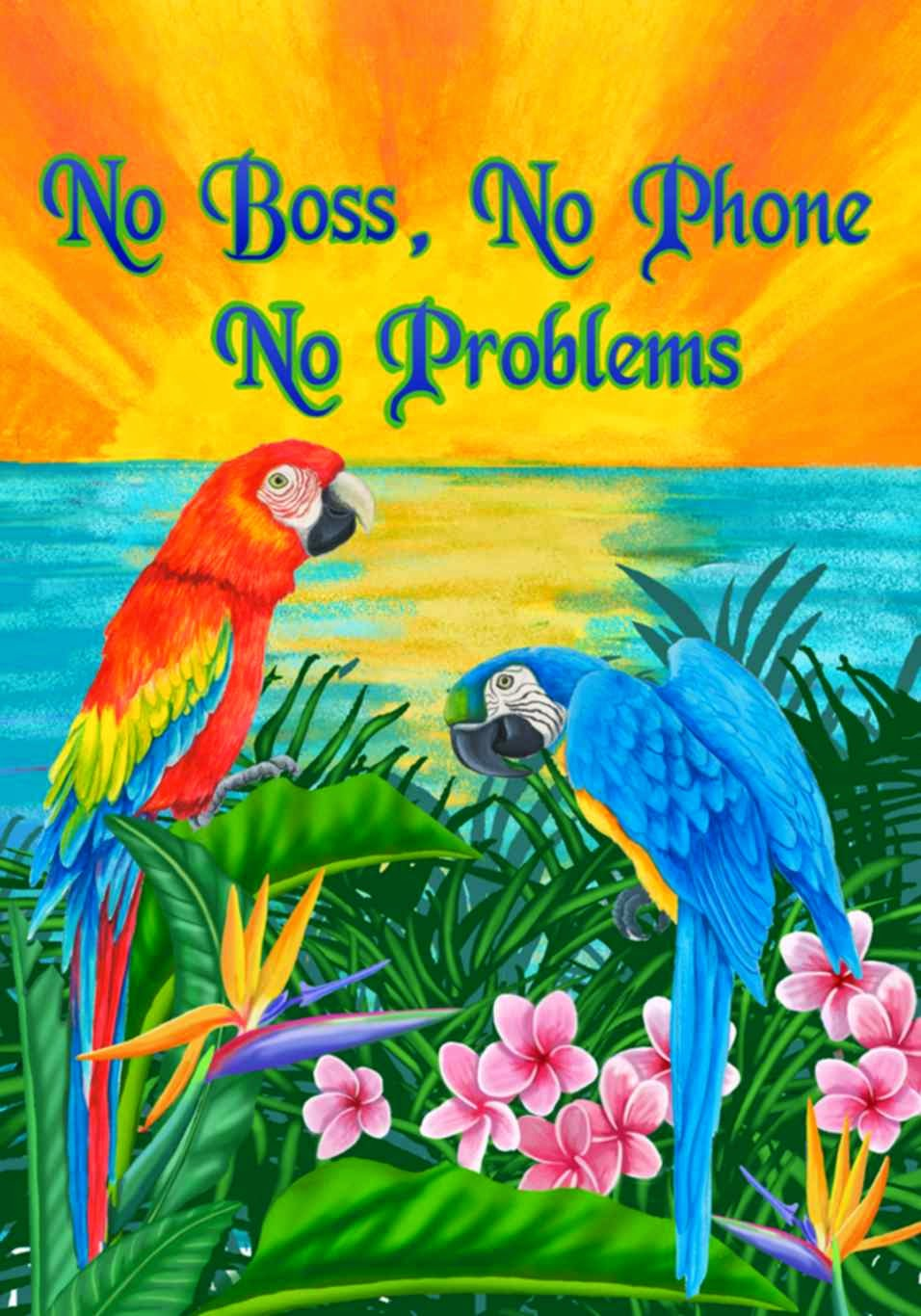 no boss, no phone, no problems summer garden flag