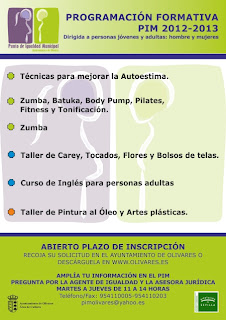 PROGRAMACIÓN FORMATIVA PIM. 2012-2013