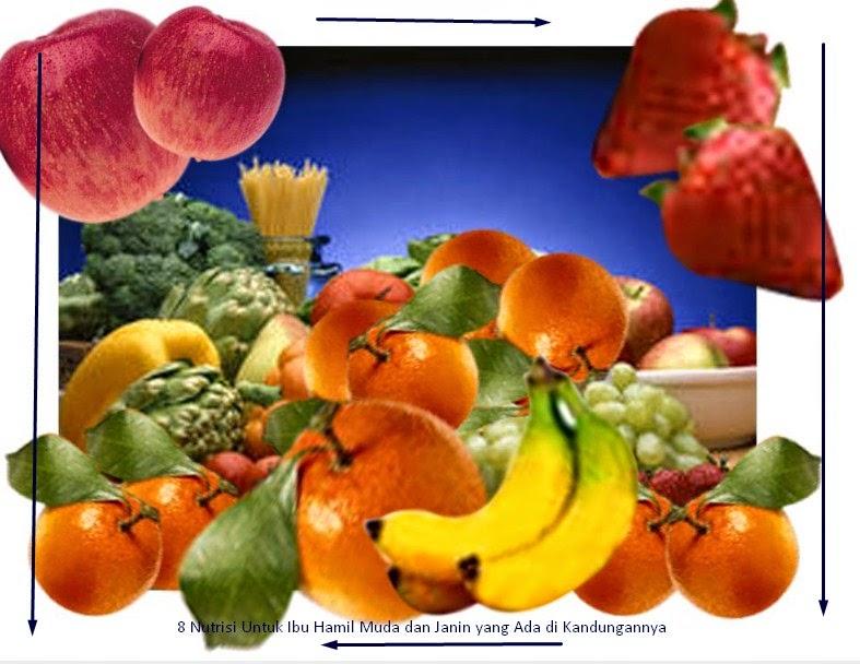 Nutrisi Untuk Ibu Hamil Muda dan Janin yang Ada di Kandungan