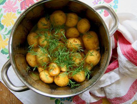 potatis gi värde