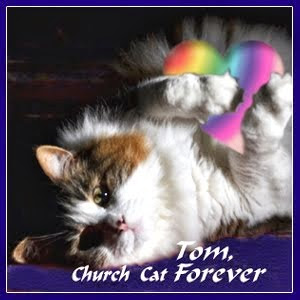 RIP Church Cat Tom