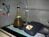 Mylar-Balloon-Biogas