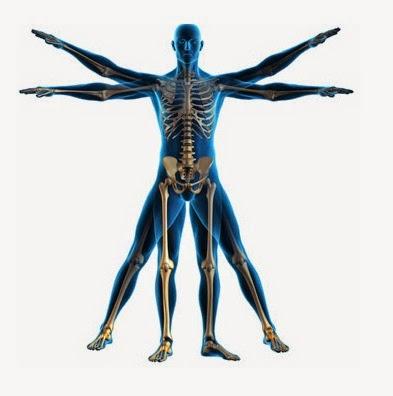Resultado de imagen para kinesioterapia