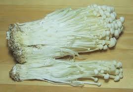 Jamur, Merang, Padi, Jamur merang atau padi, budidaya jamur