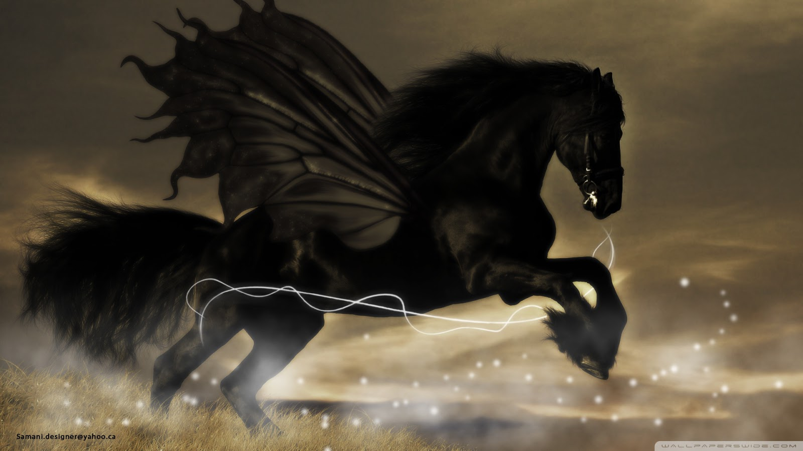 Cool   Wallpaper Horse Mustang - black+horse+27  Graphic_80713.jpg