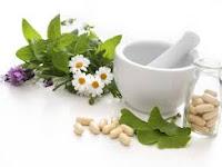 Menghilang Benjolan Wasir Ambeien dengan Herbal