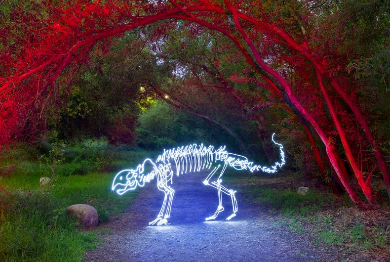 17-Leptoceratops-Darren-Pearson-Dinosaurs-Palaeontology-Skeletons-and-Angels-in-Light-Paintings-www-designstack-co