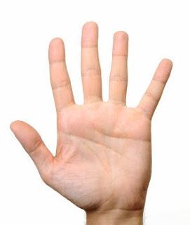 Fingers = Jari-jari tangan
