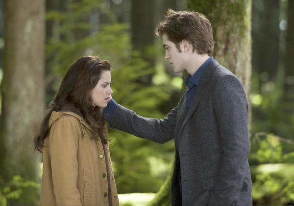 twilight saga pdf free download