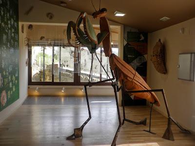 Museo de Naturaleza en Fuendetodos