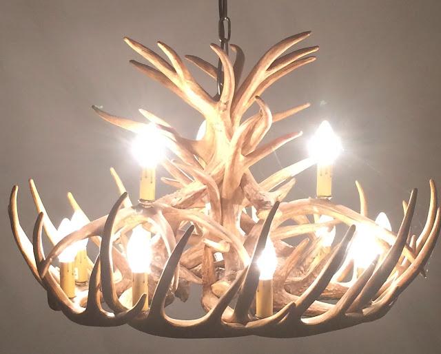 Stag antler chandelier