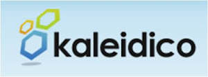 Kaleidico Detroit Search Marketing Service
