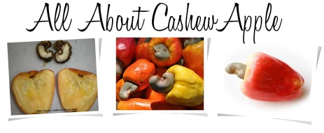 The Earth of India: All About Cashew Apple in India
