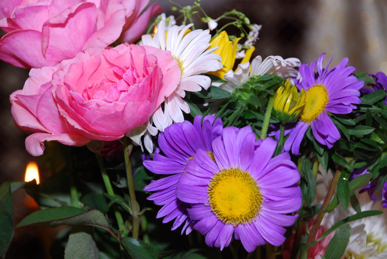 all best picos: Poze Desktop Flori - Buchete de flori ...