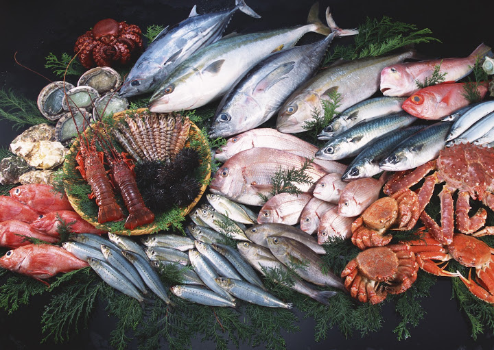 The Whitby Catch - Buy fresh fish and seafood online
