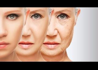 """Um grupo de cientistas liderado pelo espanhol Juan Carlos Izpisua encontrou evidências de que o envelhecimento está relacionado à epigenética, um método que dá informações às células sobre o que elas devem fazer com cada um de seus genes. Isto implicaria que, em um futuro não muito distante, a ciência poderia frear ou, até mesmo, reverter o processo de envelhecimento através da """"edição"""" epigenética."""
