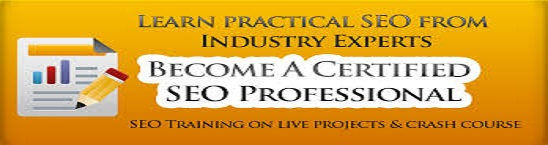 SEO Service company |SEO Training Institute In sikar|Digital Marketing Course Institute In sikar