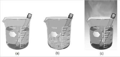 Pergeseran Kesetimbangan Kimia, Praktikum, Contoh, Percobaan, Reaksi