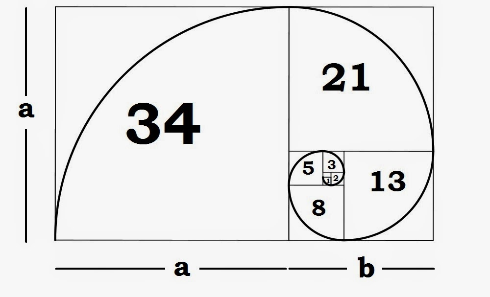 understanding the fibonacci sequence golden ratio
